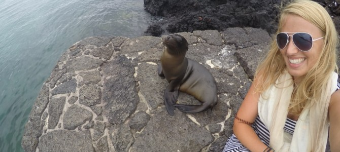 Galapagos Islands – Animalicious